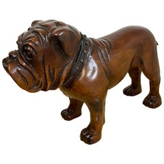 Antique English Carved Mahogany Bull Dog with Steel Collar