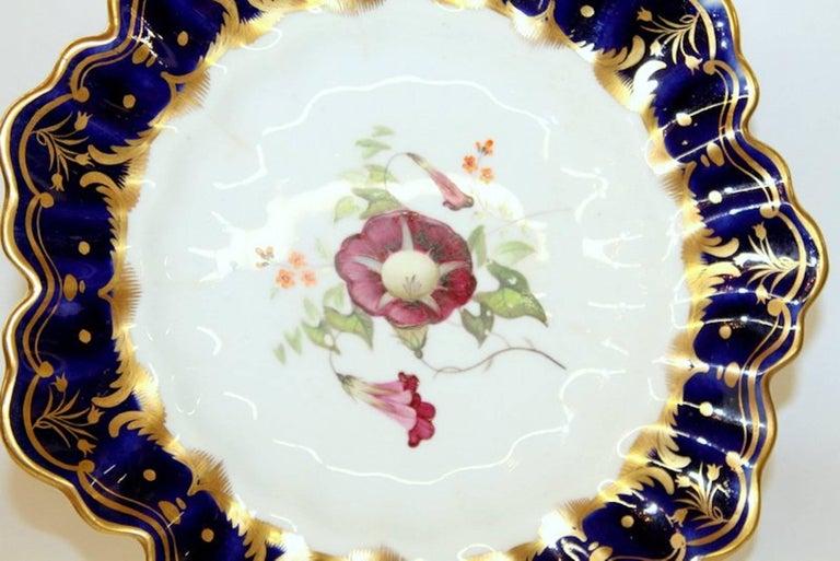 Superb antique English hand-painted porcelain cobalt and gold border botanical cabinet plate.