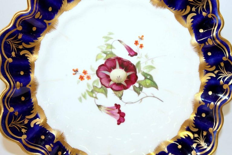 Hand-Painted Antique English Hand Painted Porcelain Cobalt and Gold Botanical Cabinet Plate For Sale