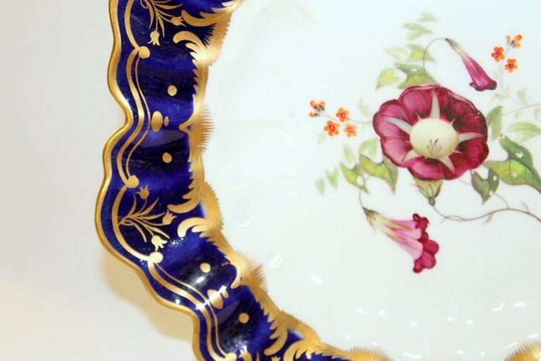 19th Century Antique English Hand Painted Porcelain Cobalt and Gold Botanical Cabinet Plate For Sale