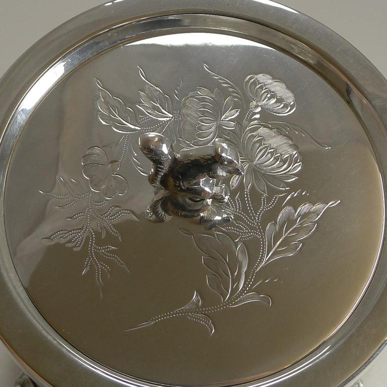 Antique English Oak and Silver Plate Biscuit Box / Barrel circa 1900, Squirrel For Sale 7