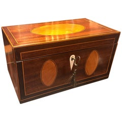Antique English Regency 19th Century Satinwood Inlaid Mahogany Box