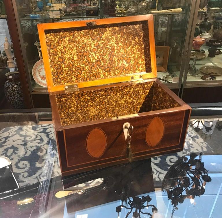 Antique English Regency Satinwood Inlaid Mahogany Box For Sale 1