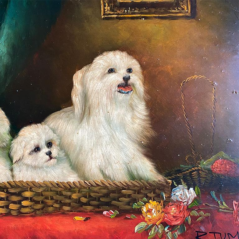 Antique English Traditional Framed Gilt Wood Maltese Dog Painting, Signed For Sale 1