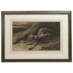 Antique Etching, 'Raiders' Lions by Herbert Dicksee. African Wildlife
