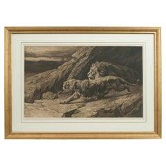 Antique Etching, 'Raiders' Lions by Herbert Dicksee, African Wildlife