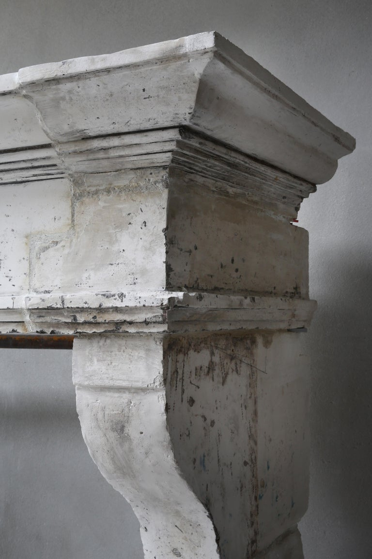 Antique Fireplace of French Limestone, Louis XIII Style, 19th Century For Sale 6