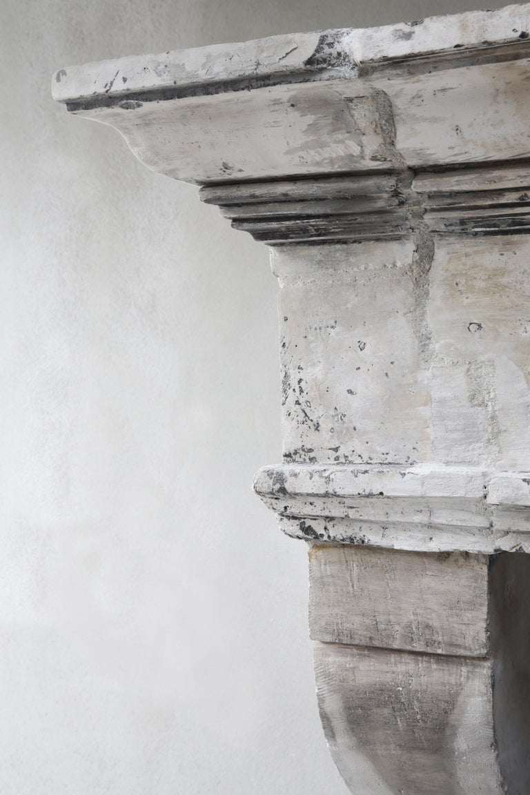 Antique Fireplace of French Limestone, Louis XIII Style, 19th Century For Sale 3