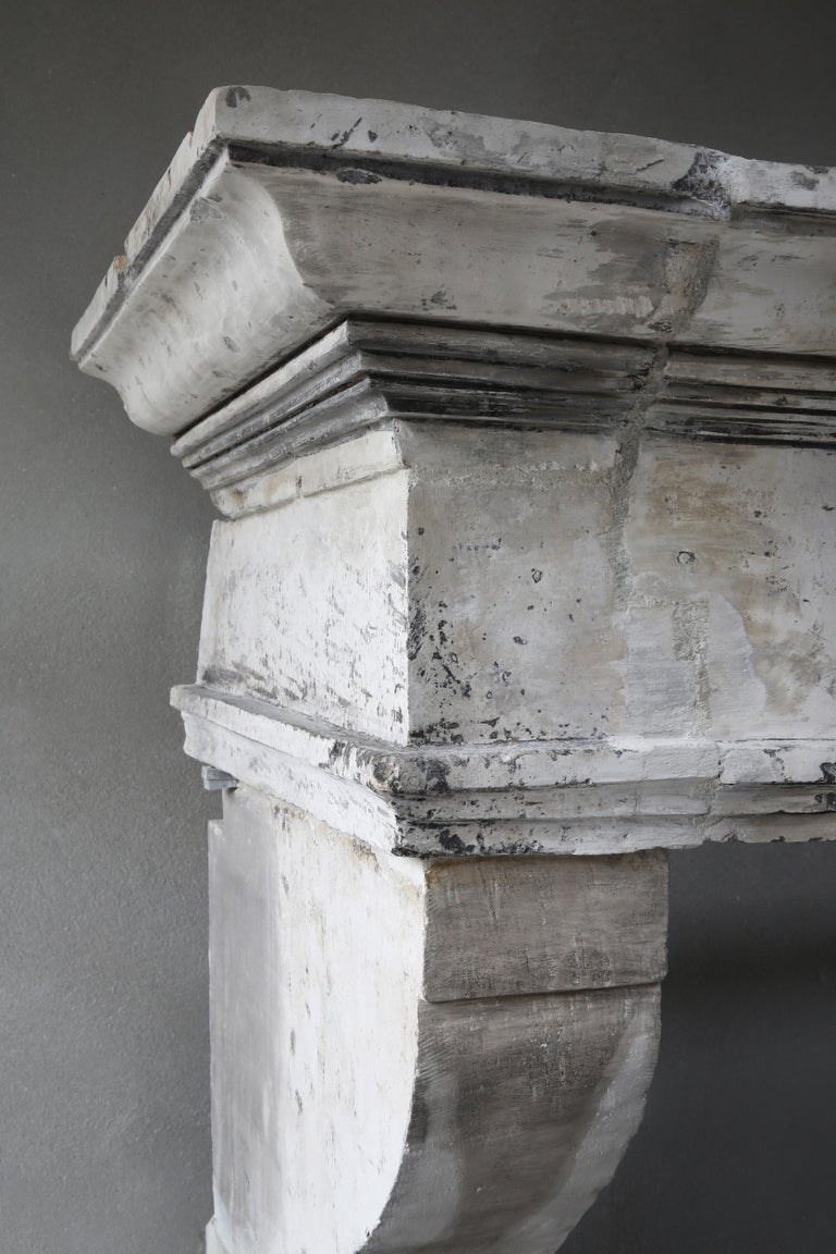Antique Fireplace of French Limestone, Louis XIII Style, 19th Century For Sale 4
