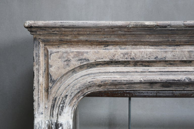 Antique Fireplace of French Limestone, Louis XIV Style, 19th Century For Sale 1