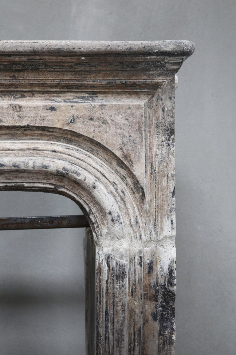 Antique Fireplace of French Limestone, Louis XIV Style, 19th Century For Sale 3