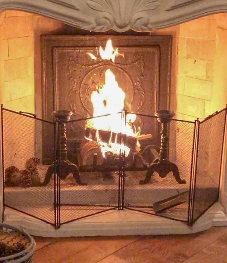 Antique Fireplace Screens For Sale at 1stdibs