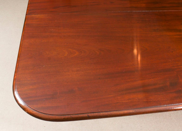 Antique Flame Mahogany Extending Dining Table 19th Century and 10 Chairs For Sale 8