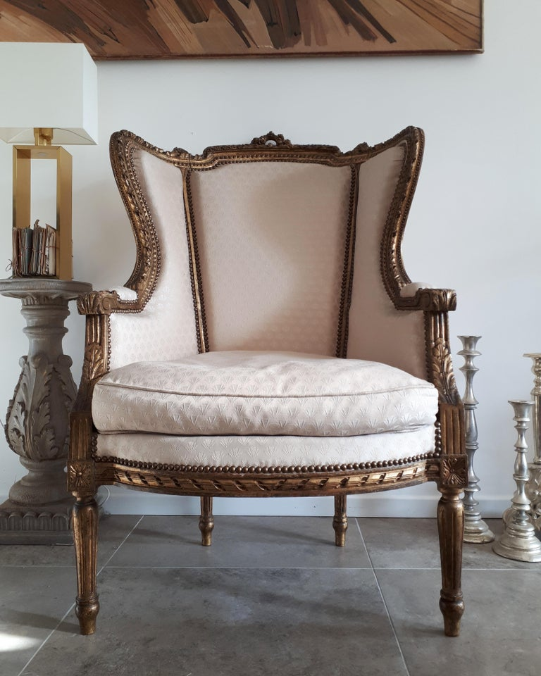 Fabric Antique French Bergère Louis XVI Style Napoléon III Period For Sale