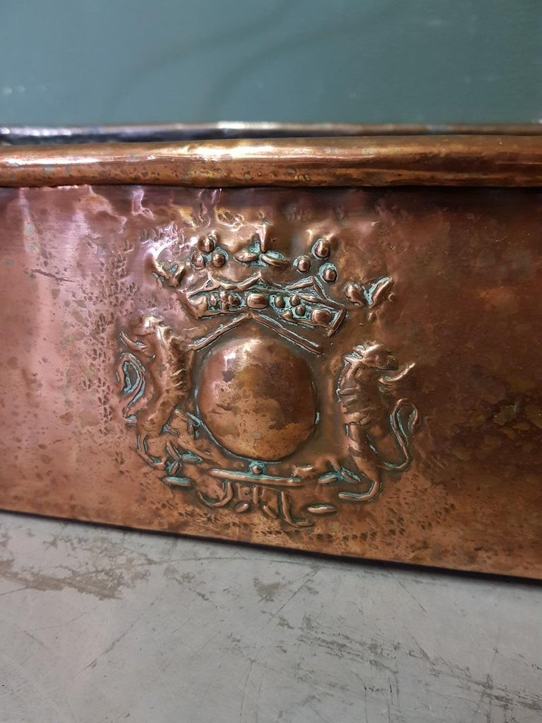 Antique French copper fish pan with wrought iron handle and decorated with an embossed coat of arms of 2 lions and crown, is in a good but used condition. Originating from the 19th century.  The measurements are, Depth 15 cm/ 5.9 inch. Width 47