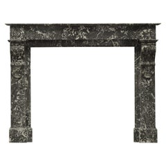 Antique French Fireplace in Saint Anne Marble