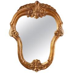 Antique French Fleur-de-Lis Shield Form Giltwood Wall Mirror, circa 1860
