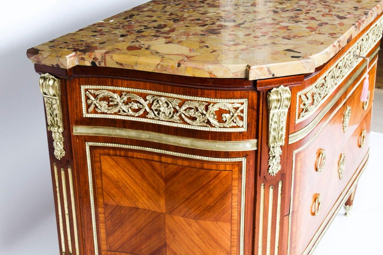 Antique French Louis Revival Ormolu Mounted Commode Chest, 19th C 8