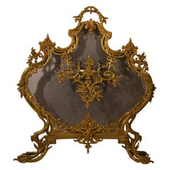 Antique French Louis XV Style Firescreen