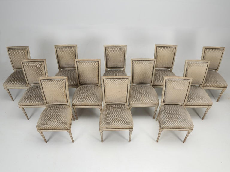 Beech Antique French Louis XVI Style Dining Chairs, Set of 12 in