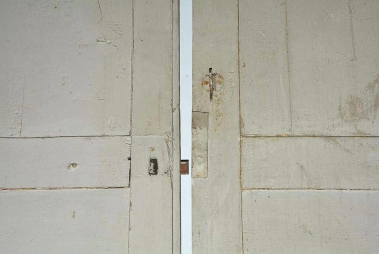 Antique French Painted Paneled Cupboard Doors For Sale 1