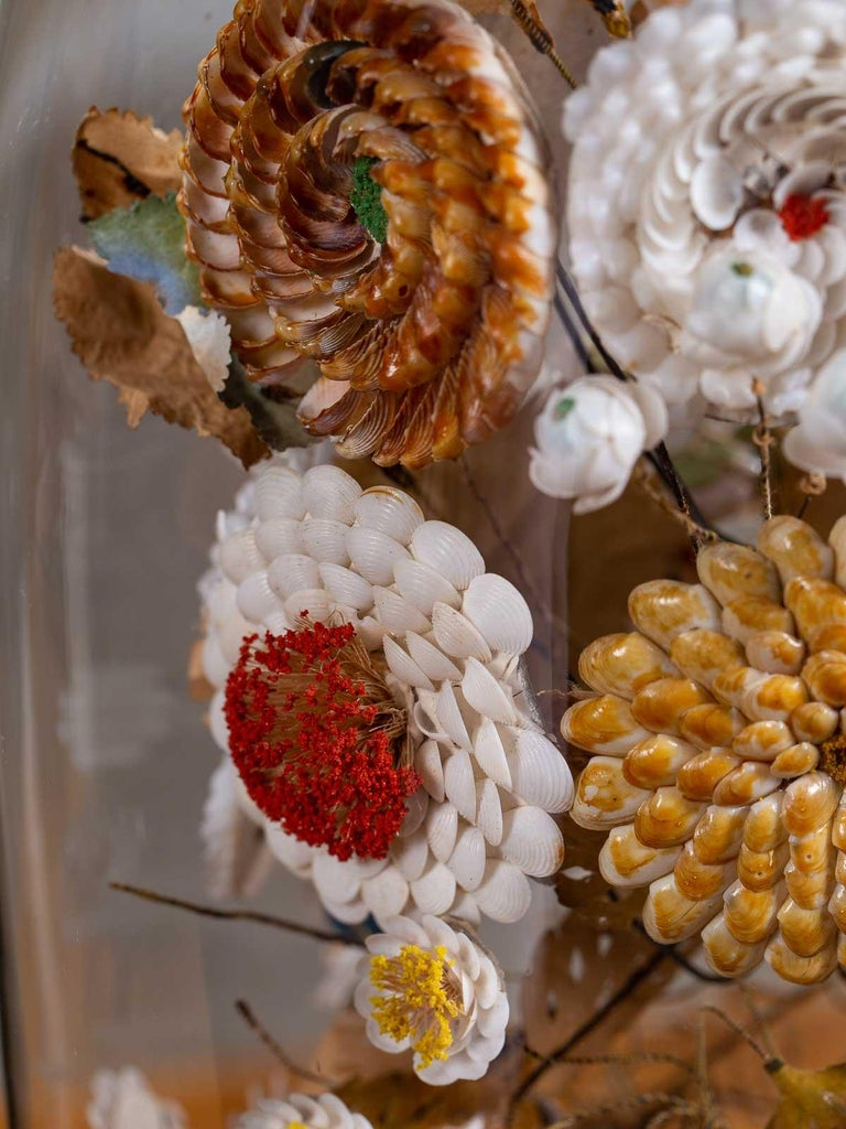 Antique French Sea Shell Floral Display under Glass Dome, France, circa 1870 6