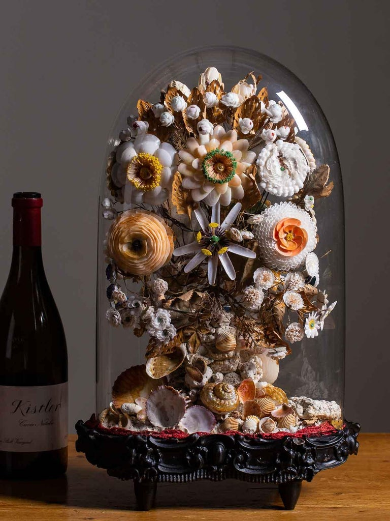 Antique French Sea Shell Floral Display under Glass Dome, France, circa 1870 13
