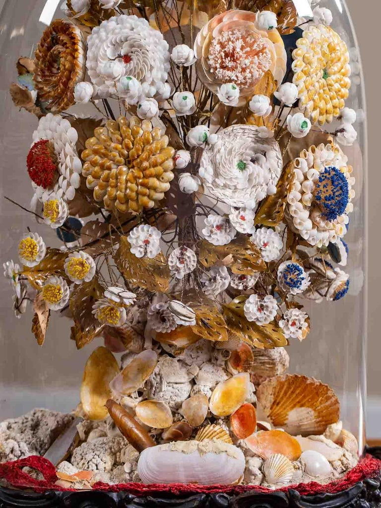 Antique French Sea Shell Floral Display under Glass Dome, France, circa 1870 2