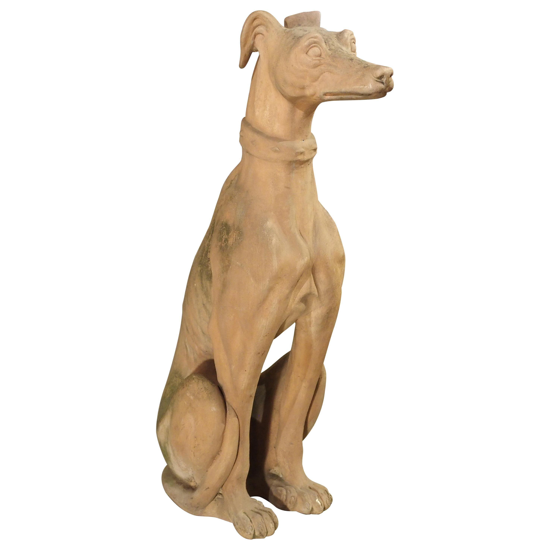 Antique French Terra Cotta Greyhound Statue