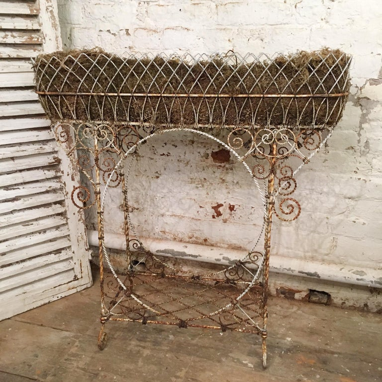 Antique French Wirework Jardinière Plant Stand For Sale 4