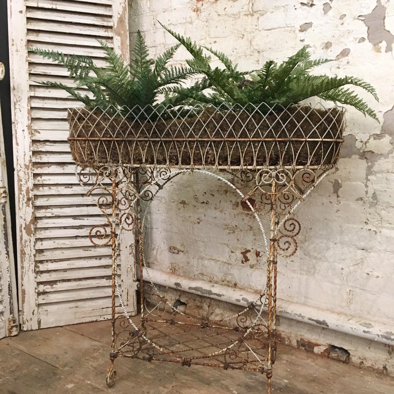 Antique French Wirework Jardinière Plant Stand For Sale 5