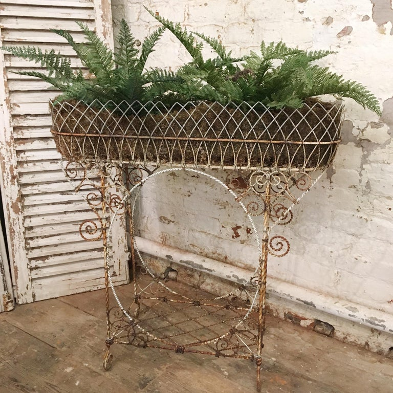 This twisted wirework jardinière plant stand is made from many pieces of interwoven wire strands, over decorated with loops and swirls. French origin. It has one main basket at the top with vintage mossy lining, the stand also has a lower shelf for