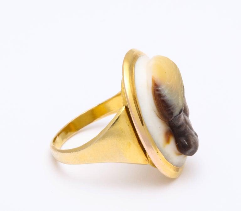 Antique Georgian Fine Cameo Ring of a Blackamoor For Sale 2