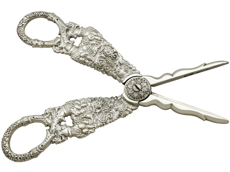 Early 19th Century Antique Georgian English Composite Sterling Silver Grape Scissors For Sale