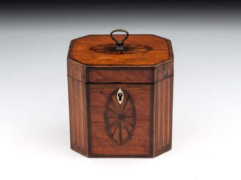 Georgian satinwood tea caddy with fluted cants and beautiful fan oval inlays to the top and front with this sides having burr yew medallions. Finished with a oval shaped bone escutcheon and delicate brass handle to the top.   The delightful