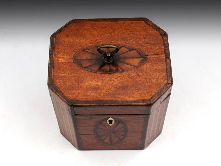 George III Antique Georgian Satinwood Burr Yew Tea Caddy For Sale