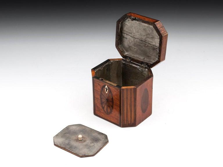 Antique Georgian Satinwood Burr Yew Tea Caddy For Sale 1
