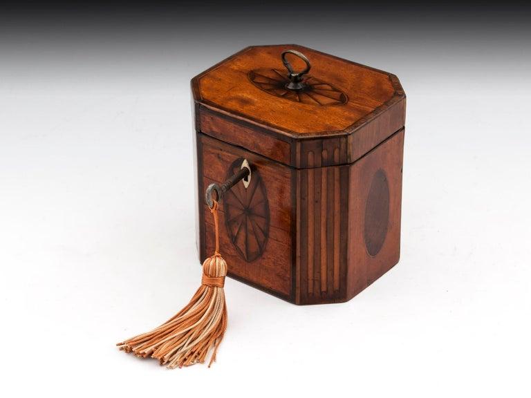Antique Georgian Satinwood Burr Yew Tea Caddy For Sale 2