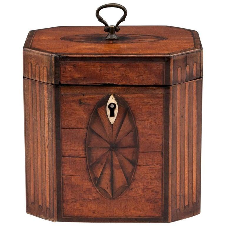 Antique Georgian Satinwood Burr Yew Tea Caddy For Sale