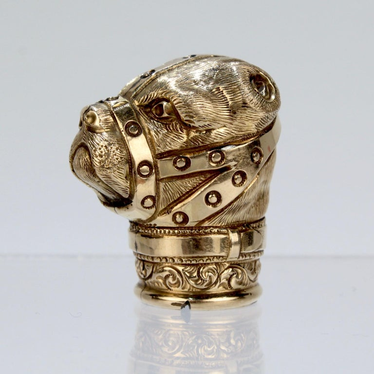 A wonderful, figural antique Victorian gold-filled cane top or walking stick handle.  In the form of a muzzled bear with cropped ears.   Bear Baiting was a brutal blood sport akin to modern dog fighting that pitted a bear (often tethered and