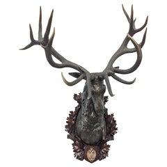 Antique Habsburg Red Stag Trophy on Bronze Shoulder Mount from Eckartsau Castle