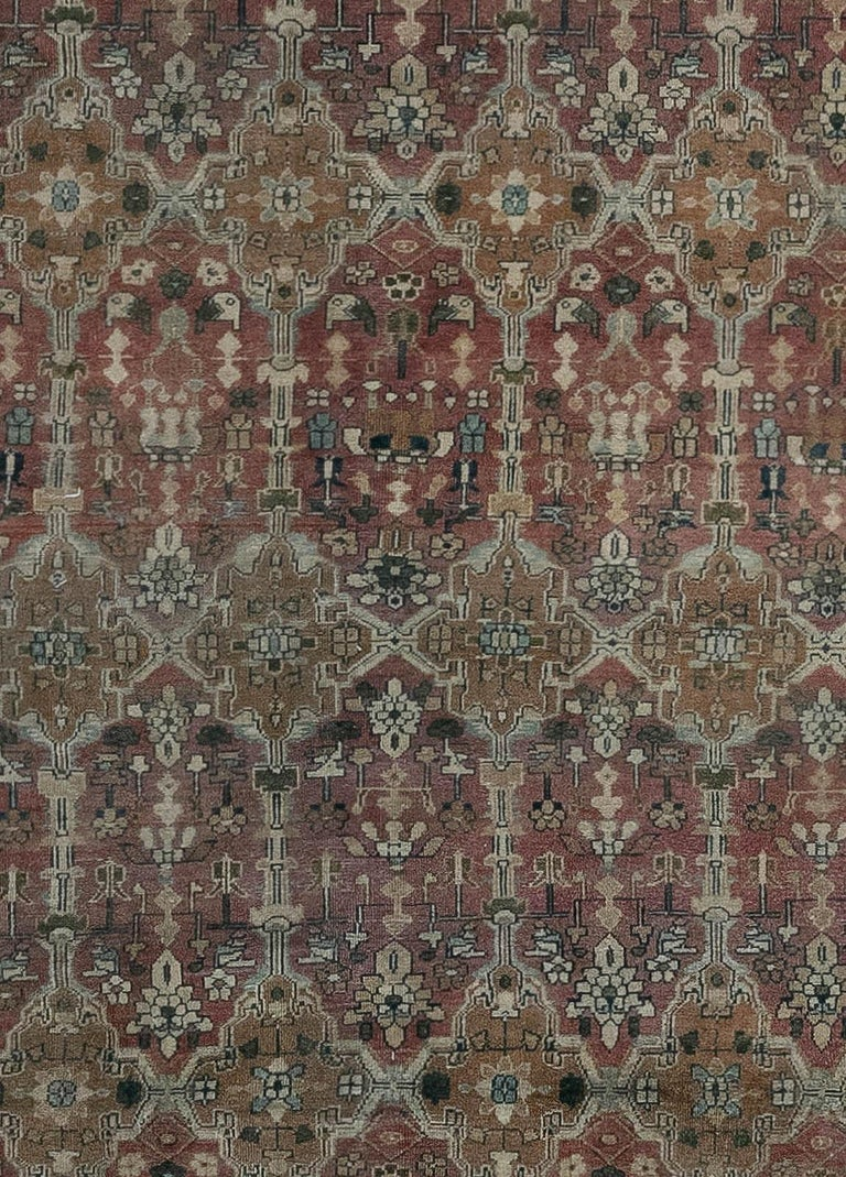 Antique Indian hand knotted cotton carpet Size: 12'2
