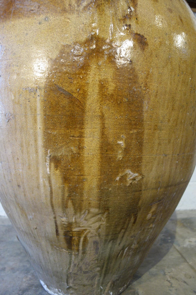 Antique Italian Orcio Puglia Colossal Jar Ochre and Umbra Glaze with Engraving For Sale 12