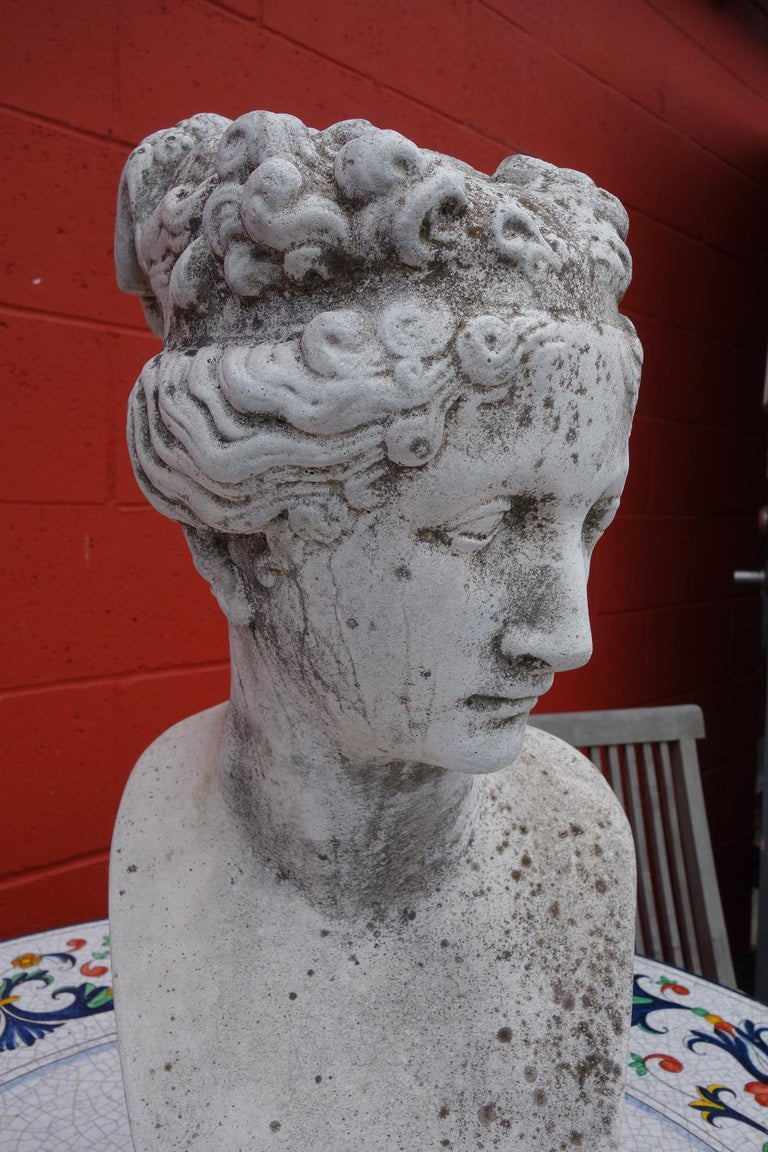 19th Century Italian Renaissance Style Bust of Venus Goddess of Love and Victory For Sale 1