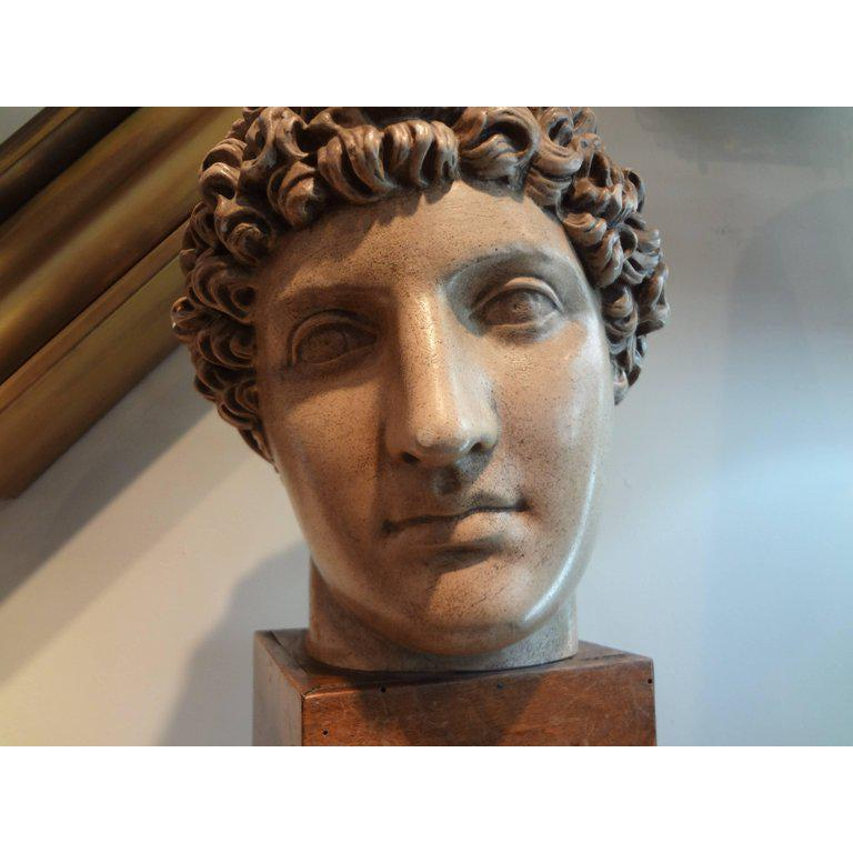 Classical Roman Antique Italian Terracotta Classical Bust on a Wood Base For Sale