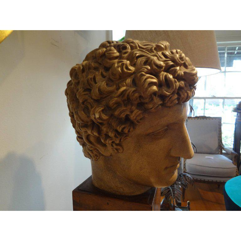 Antique Italian Terracotta Classical Bust on a Wood Base In Good Condition For Sale In Houston, TX