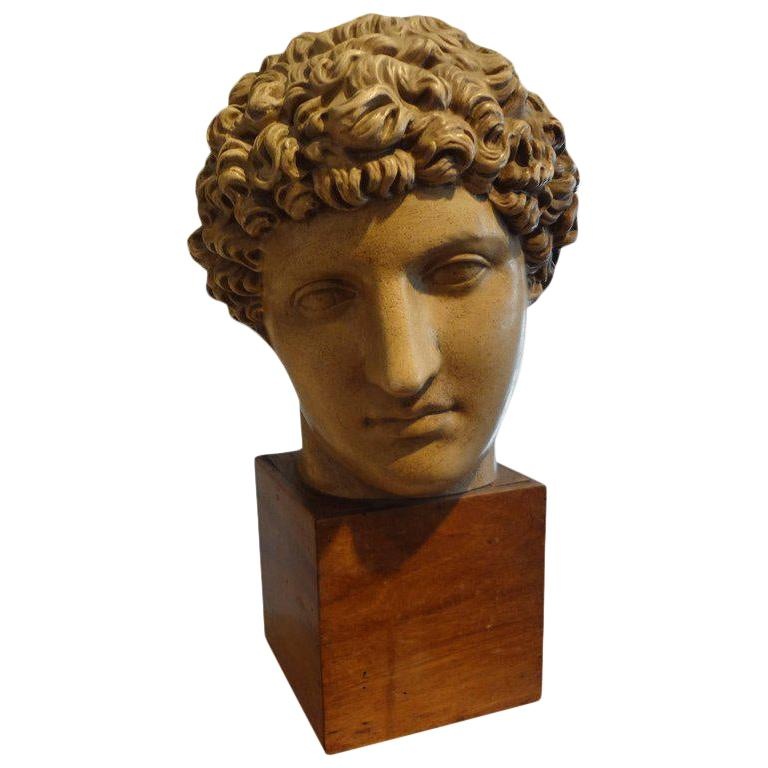Antique Italian Terracotta Classical Bust on a Wood Base For Sale