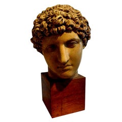Antique Italian Terracotta Classical Bust on a Wood Base