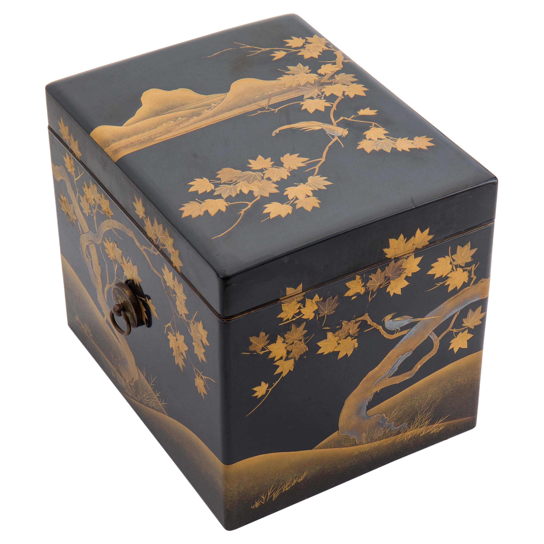 Antique Japanese Black Lacquer Noh Mask Box with Gold Maki e Design, Edo Period