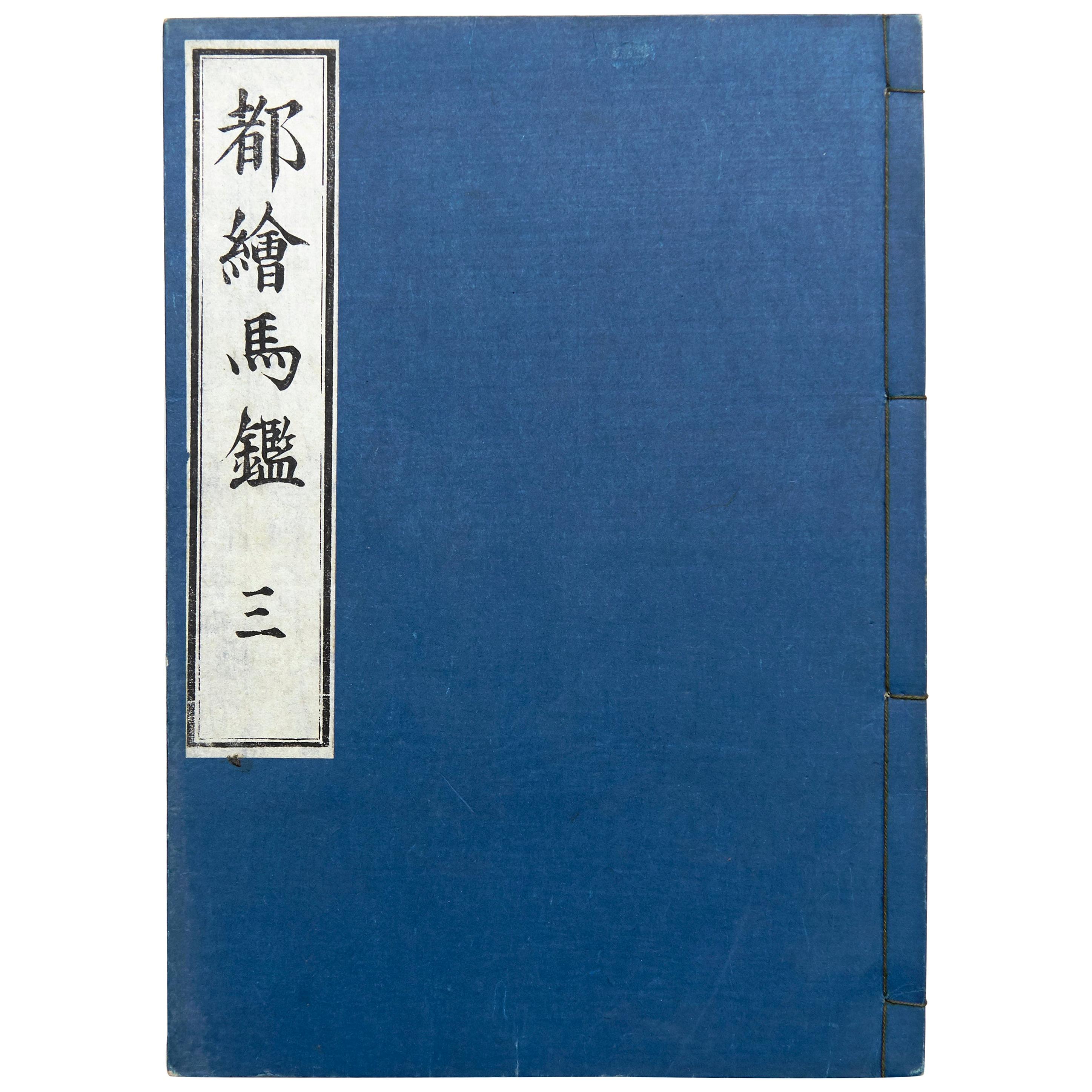 Antique Japanese Ehon Book Meiji Era